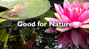 Good for Nature300
